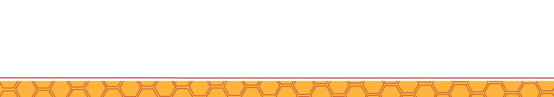 BURT S BEES