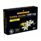 SIDN OLIGOROYAL GELEE ROYALE - PROPOLIS 20 AMPOULES